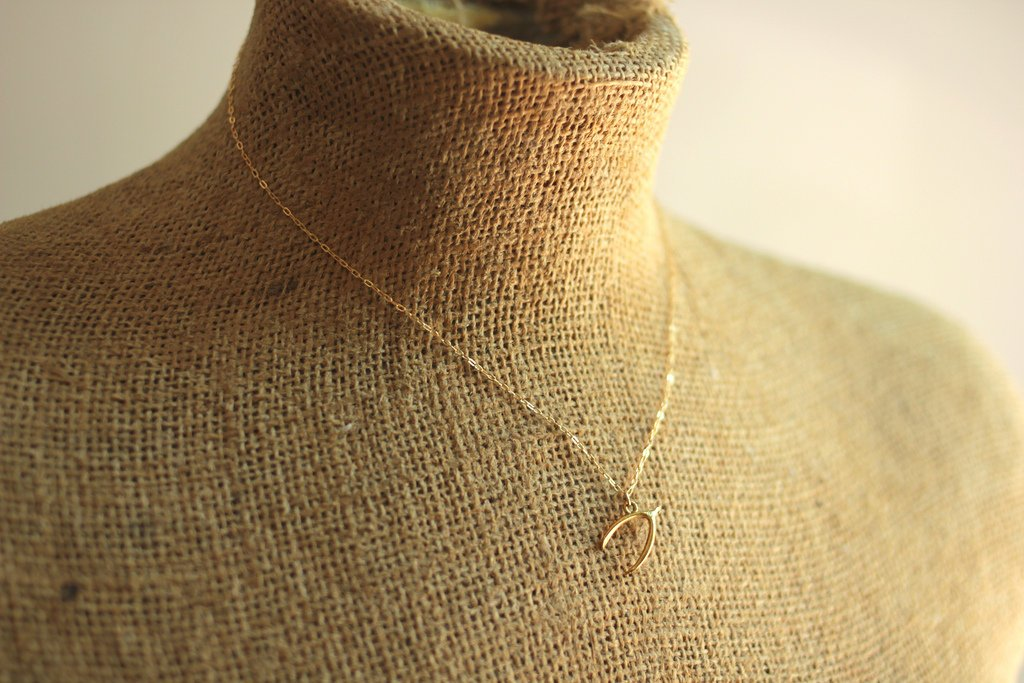 Wish bone necklace on 14kt gold fill chain